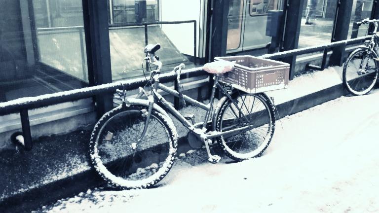 bike-634285_1920.jpg